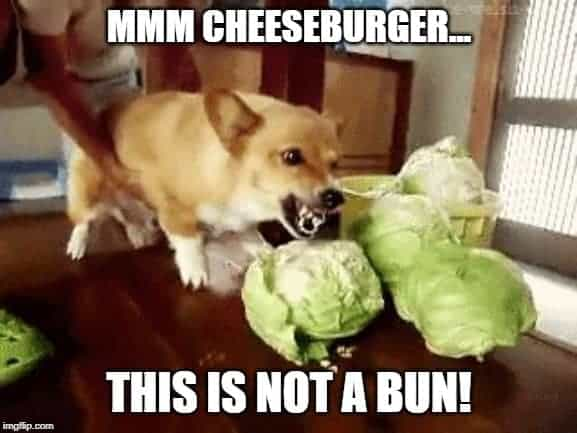 lettuce as a bun for a burger